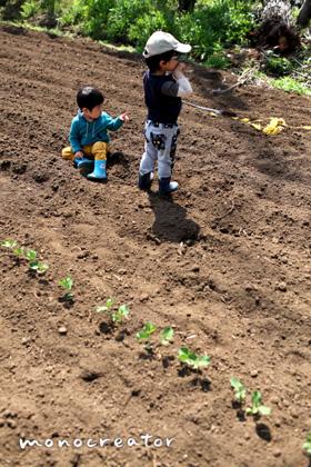 小さな農夫