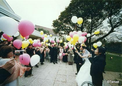aico wedding